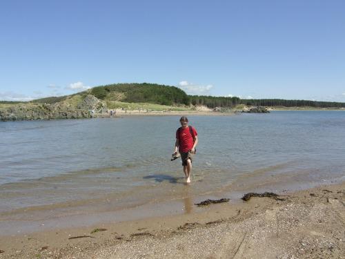 D_still_wading_to_island