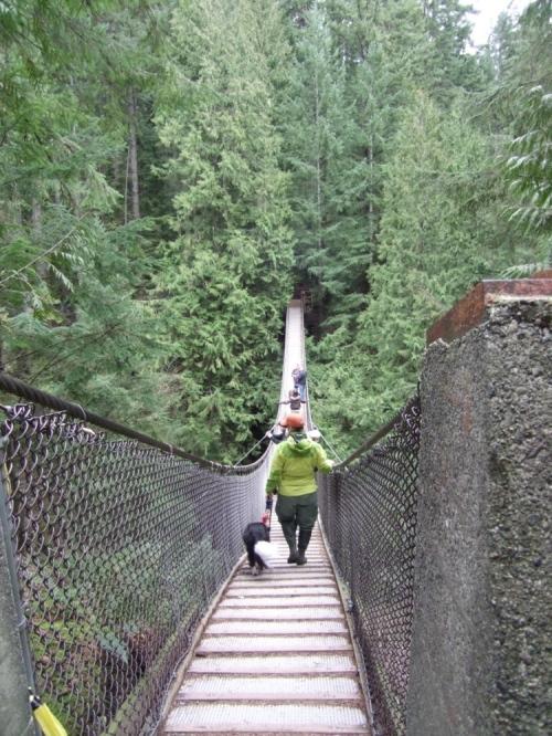 Lynn_valley_suspension_bridge_