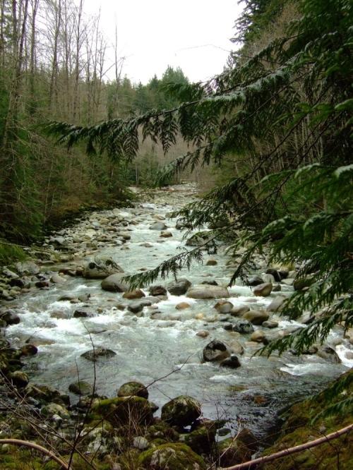 Upstream_2a